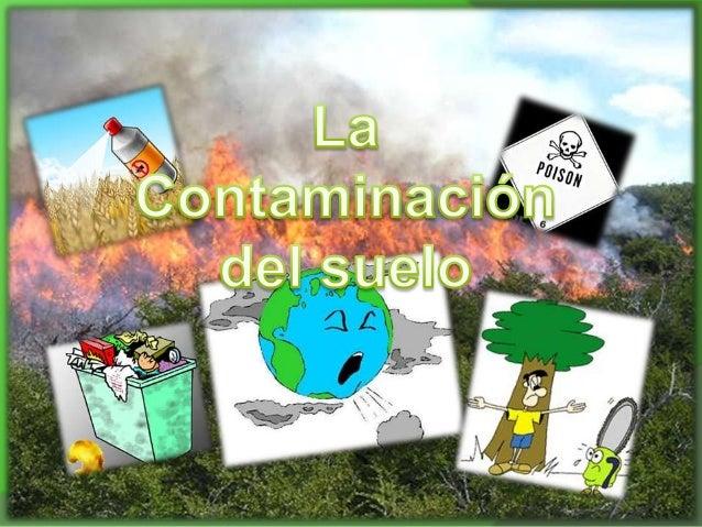Contaminacion del suelo for 5 cuidados del suelo