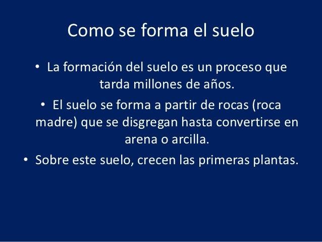 Contaminacion de suelo for Proceso de formacion del suelo