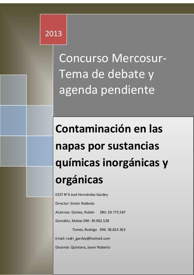 2013  Concurso MercosurTema de debate y agenda pendiente Contaminación en las napas por sustancias químicas inorgánicas y ...