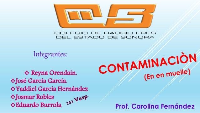 Integrantes:  Reyna Orendain. José García García. Yaddiel García Hernández Josmar Robles Eduardo Burrola Prof. Caroli...