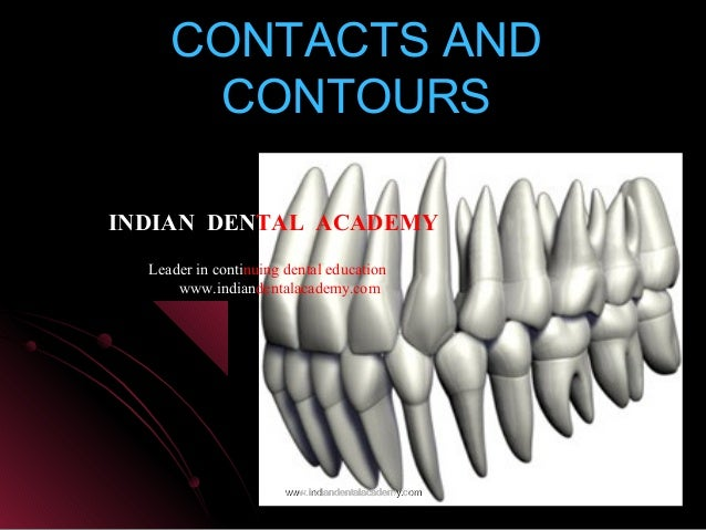 CONTACTS ANDCONTACTS AND CONTOURSCONTOURS www.indiandentalacademy.comwww.indiandentalacademy.com INDIAN DENTAL ACADEMY Lea...