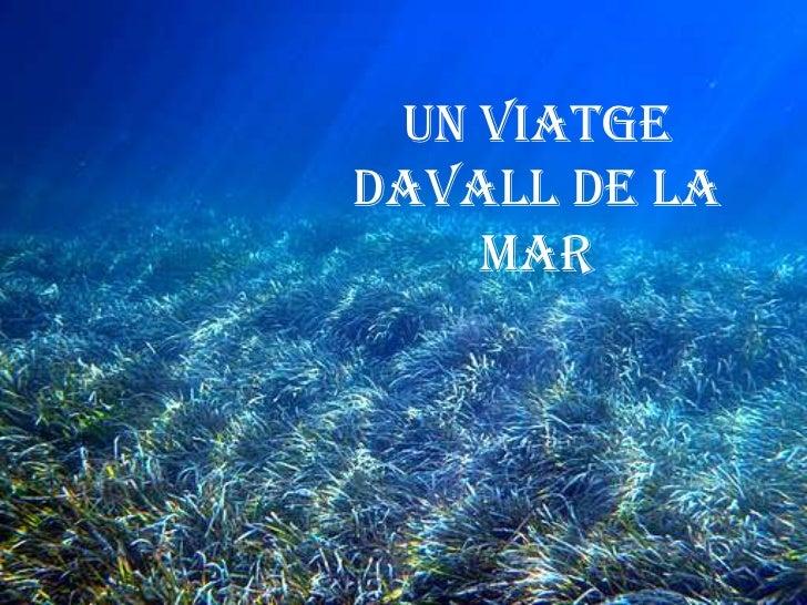 UN VIATGEDAVALL DE LA    MAR