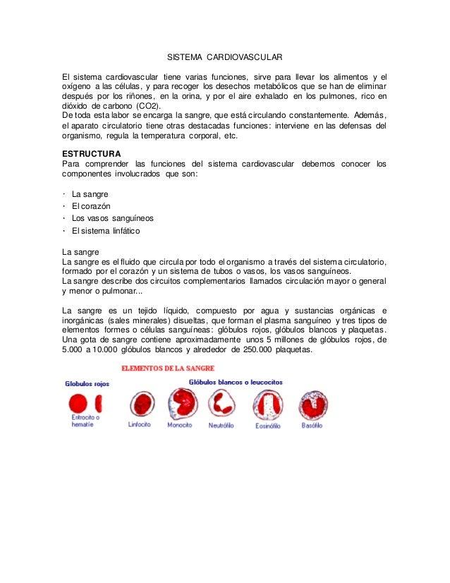 SISTEMA CARDIOVASCULAR  El sistema cardiovascular tiene varias funciones, sirve para llevar los alimentos y el  oxígeno a ...