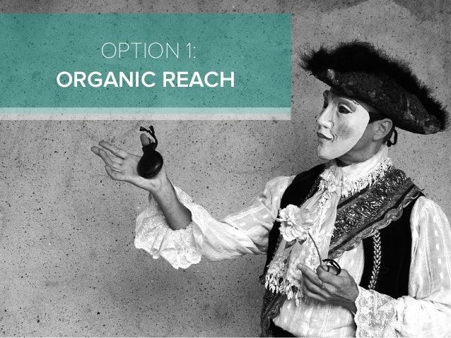 OPTION 1: ORGANIC REACH