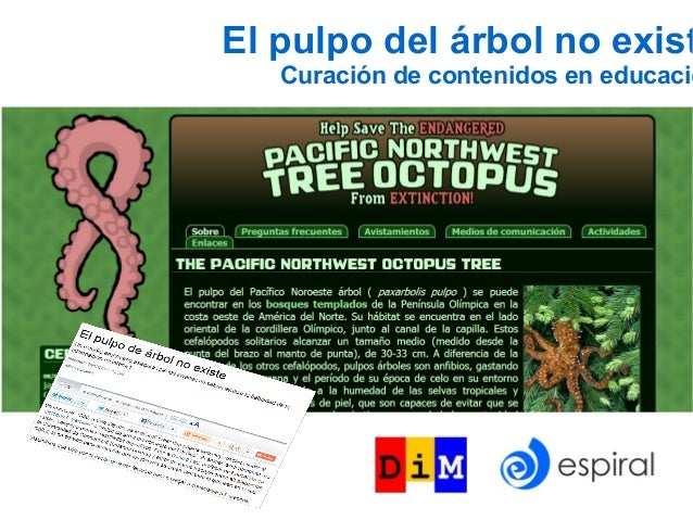 El pulpo del árbol no exist   Curación de contenidos en educació