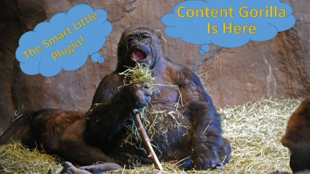 Content Gorilla is a WordPress plugin that will allow users to publish content from mazon, Youtube, Yahoo, RSS, Flickr and...