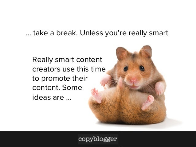 …take a break. Unless you're really smart. Really smart content creators use this time to promote their content. Some ide...