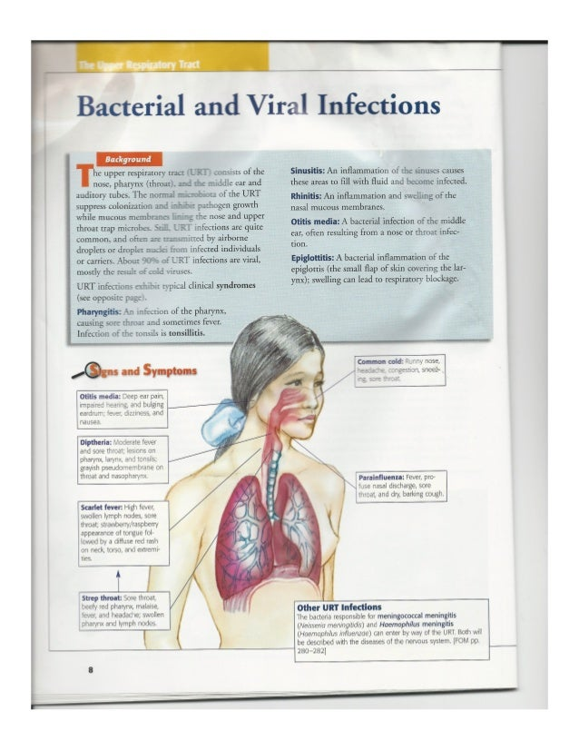 infectious diseases by body systems, Muscles