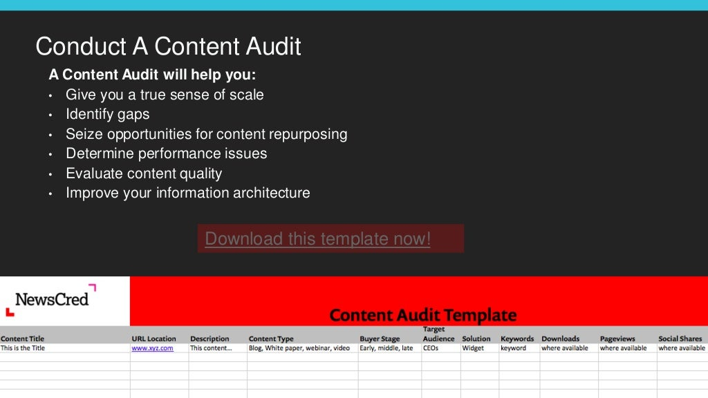 Conduct a marketing audit