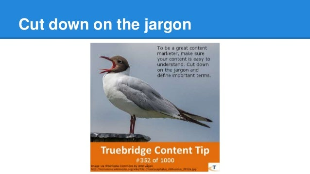 Financial Content Marketing Tips, Series 1 Slide 2