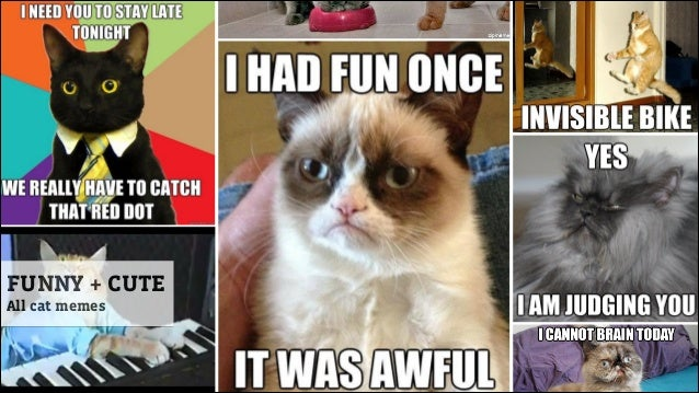Funny Meme Types : 7 types of entertaining content and how to combine them to create suu2026