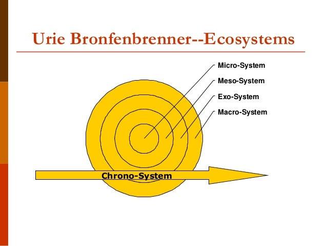 exosystem bronfenbrenner