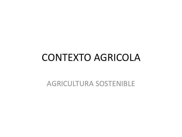 CONTEXTO AGRICOLA AGRICULTURA SOSTENIBLE