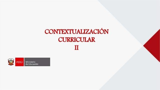 CONTEXTUALIZACIÓN CURRICULAR II