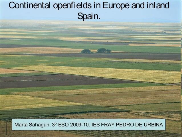 Continental openfields in Europe and inland                  Spain. Marta Sahagún. 3º ESO 2009-10. IES FRAY PEDRO DE URBINA