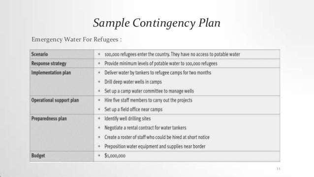 Contingency action plan Disaster Management – Sample Business Contingency Plan