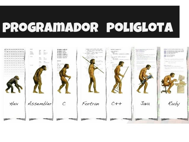 programador poliglota