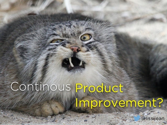 Continous Product Improvement? @lissijean