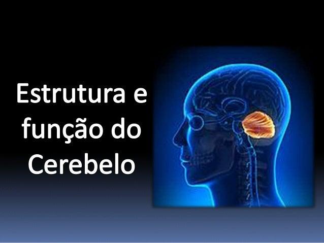 Constituição do Cerebelo
