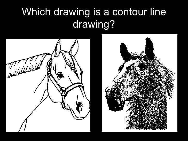 Contour Line Drawing Definition : Contour line drawing