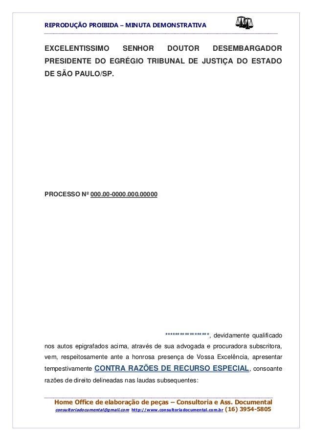 Contra Razoes Recurso Especial Dissertação November 2019