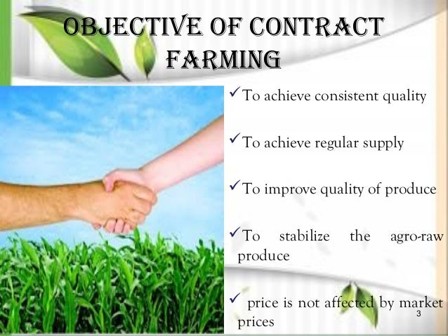 contract farming Printer-friendly version sample farmer to company contract for the cultivation of green beans 1 general: (1) farmers of village.