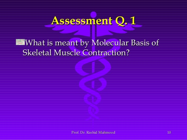 explain the molecular basis for muscle contraction