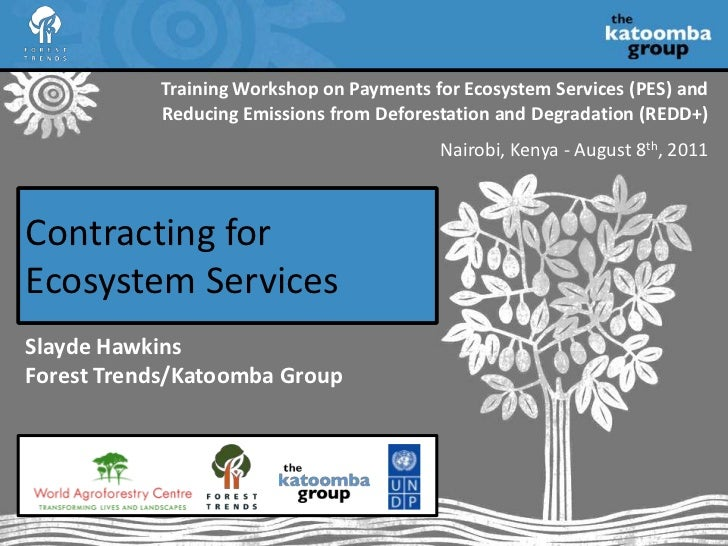 Training Workshop on Payments for Ecosystem Services (PES) and Reducing Emissions from Deforestation and Degradation (REDD...