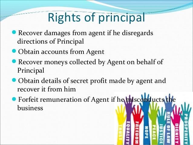 rights and duties of principal pdf
