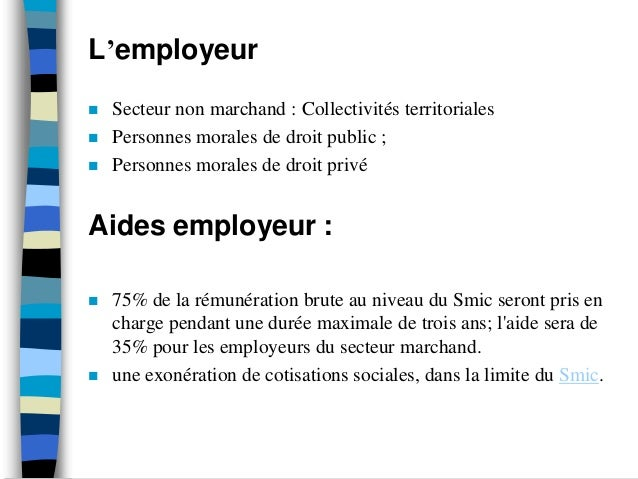 L'employeur   Secteur non marchand : Collectivités territoriales   Personnes morales de droit public ;   Personnes mora...