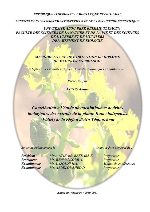 REPUBLIQUE ALGERIENNE DEMOCRATIQUE ET POPULAIREMINISTERE DE L'ENSEIGNEMENT SUPERIEUR ET DE LA RECHERCHE SCIENTIFIQUE      ...