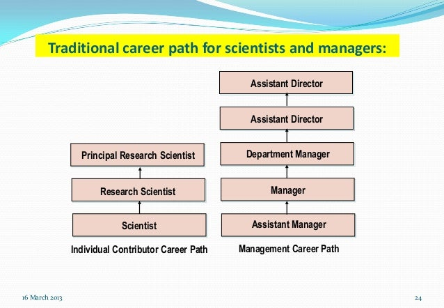 Contributor Model For Career Management Of Professional