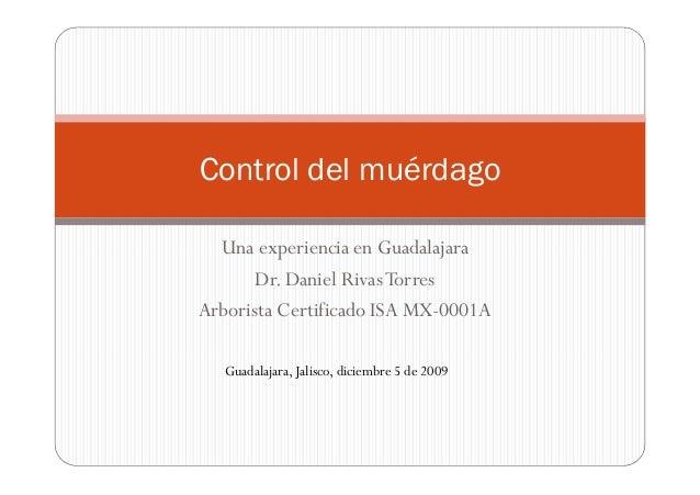 Una experiencia en GuadalajaraDr. Daniel RivasTorresArborista Certificado ISA MX-0001AControl del muérdagoGuadalajara, Jal...