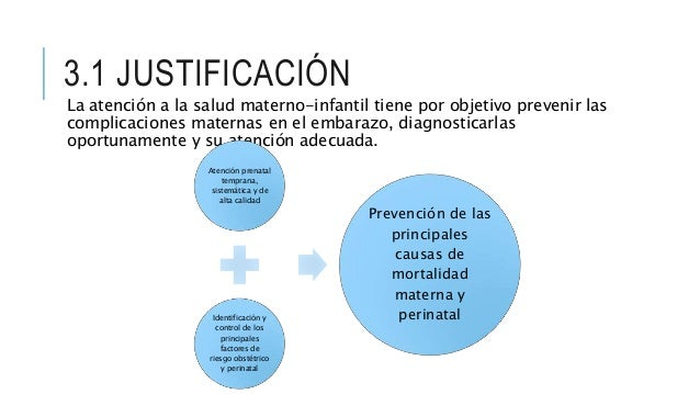 Control prenatal-con-enfoque-de-riesgo (1) Slide 3