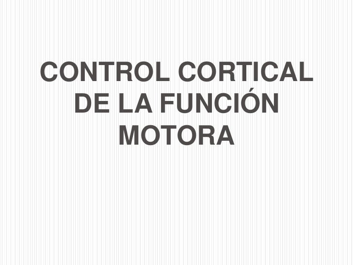 CONTROL CORTICAL  DE LA FUNCIÓN     MOTORA