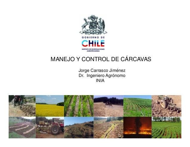 MANEJO Y CONTROL DE CÁRCAVASJorge Carrasco JiménezDr. Ingeniero AgrónomoDr. Ingeniero AgrónomoINIA