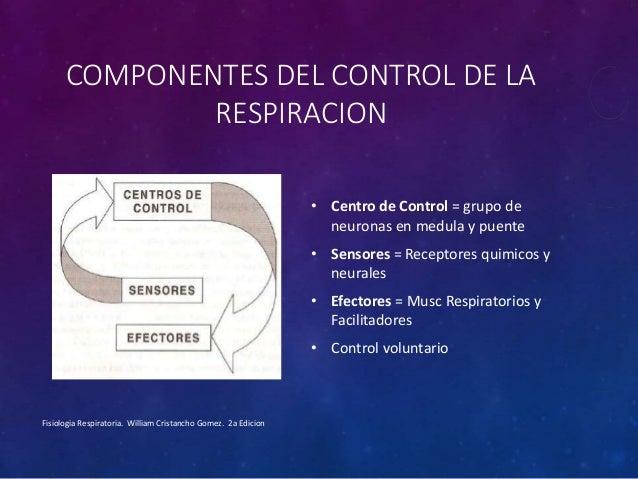 Control De La Respiración Y Dolor De Espalda: Control De La Respiracion