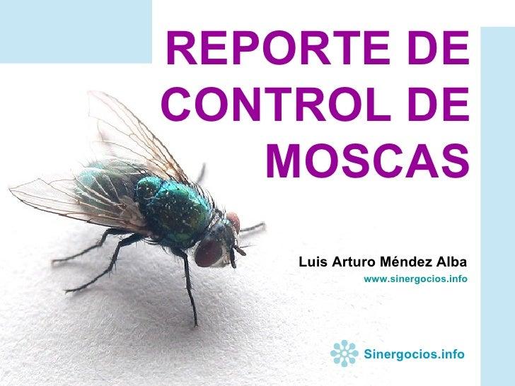 REPORTE DE CONTROL DE MOSCAS Luis Arturo Méndez Alba www.sinergocios.info Sinergocios.info