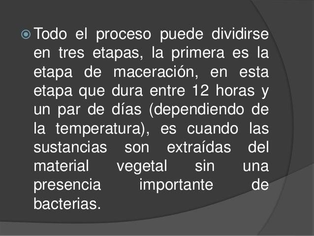  Todo el proceso puede dividirse en tres etapas, la primera es la etapa de maceración, en esta etapa que dura entre 12 ho...
