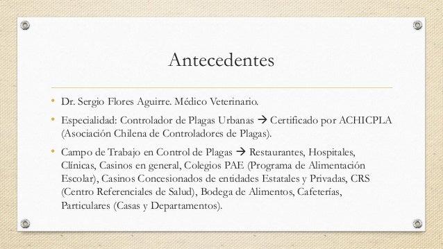 Control de Plagas Urbanas Slide 2