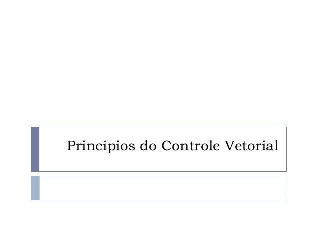 Princípios do Controle Vetorial