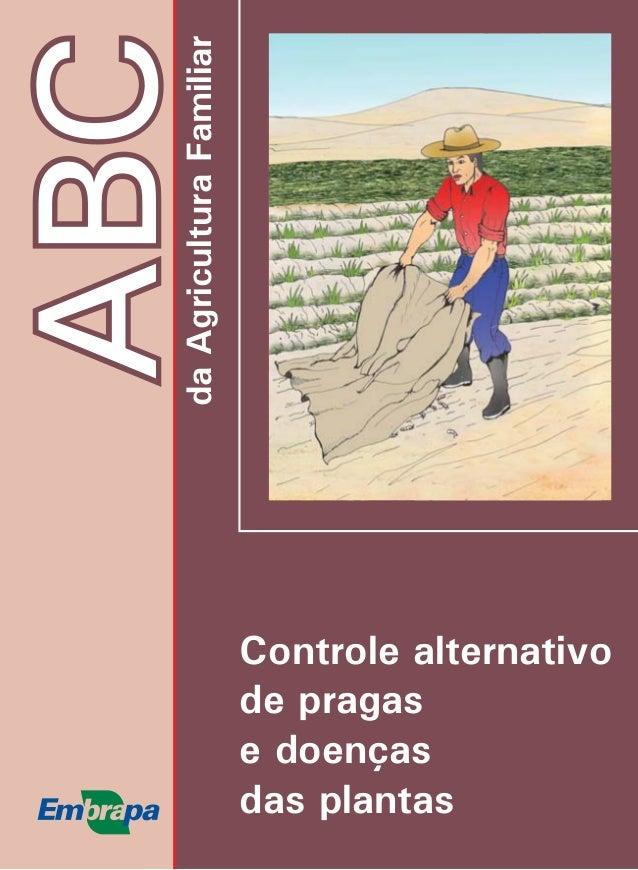 Como produzir melancia ABCdaAgriculturaFamiliar Controle alternativo de pragas e doenças das plantas