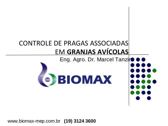 CONTROLE DE PRAGAS ASSOCIADAS  EM GRANJAS AVÍCOLAS  Eng. Agro. Dr. Marcel Tanzini  www.biomax-mep.com.br (19) 3124 3600