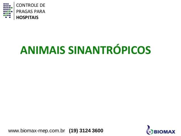 CONTROLE DE  PRAGAS PARA  HOSPITAIS  ANIMAIS SINANTRÓPICOS  www.biomax-mep.com.br (19) 3124 3600