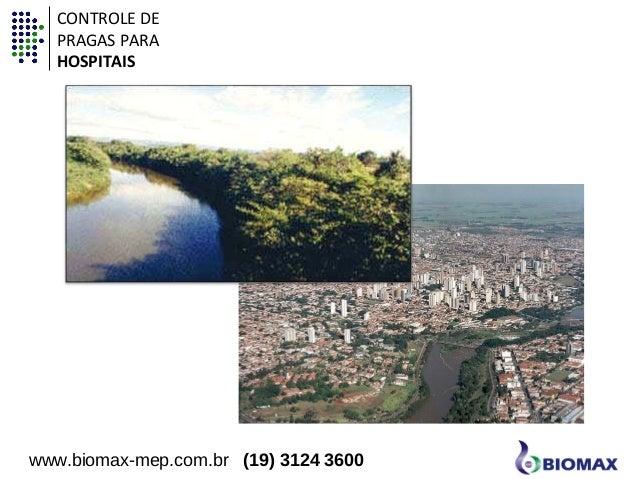 CONTROLE DE  PRAGAS PARA  HOSPITAIS  www.biomax-mep.com.br (19) 3124 3600