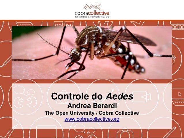 Controle do Aedes Andrea Berardi The Open University / Cobra Collective www.cobracollective.org