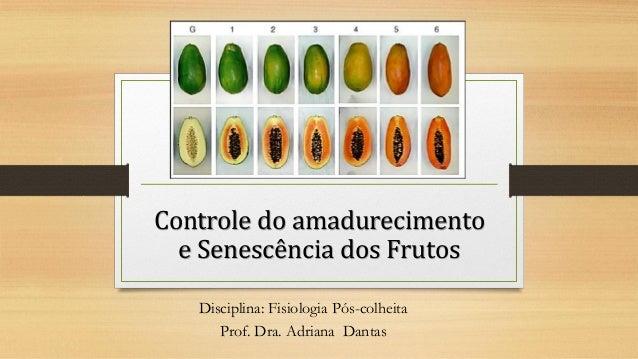 Controle do amadurecimento e Senescência dos Frutos Disciplina: Fisiologia Pós-colheita Prof. Dra. Adriana Dantas