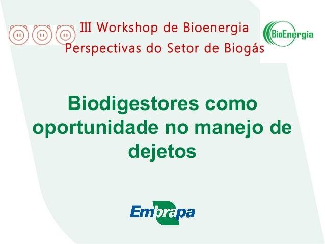 Biodigestores como oportunidade no manejo de dejetos III Workshop de Bioenergia Perspectivas do Setor de Biogás