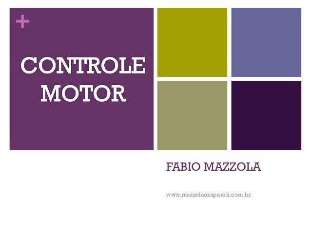 +    FABIO MAZZOLA    www.mazzolaezaparoli.com.br