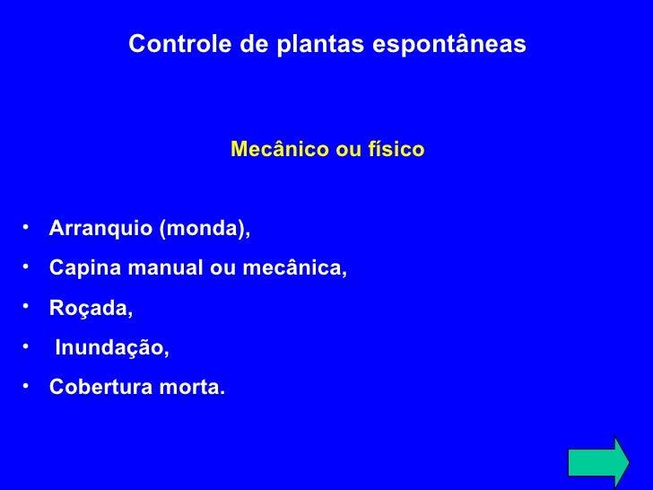 <ul><li>Controle de plantas espontâneas </li></ul><ul><li>Mecânico ou físico </li></ul><ul><li>A rranquio (monda),  </li><...